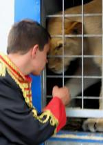 My boyfriend was the lion keeper at a cirkus in Slovakia. Crazy, but true.